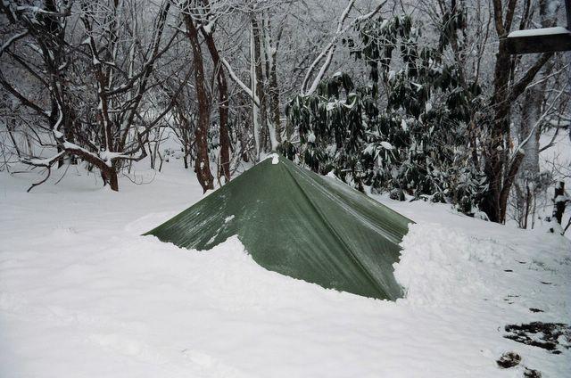 tarp_in_snow