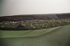 ausblick_aus_dem_tarp