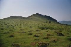 maulwurfland