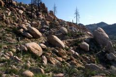 rocky_landscape