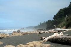 typical_northwestern_beach