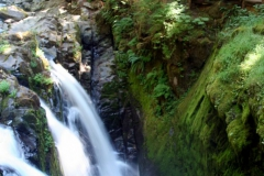 waterfalls_in_olympic_np