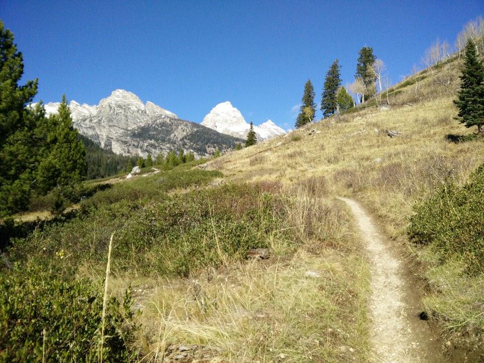 Der Trail ohne Schnee